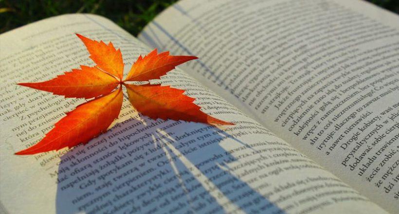 książka z jesiennym liściem